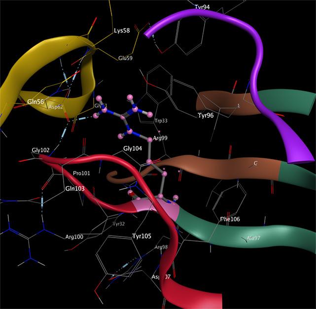 Bioinformatika - Mapování farmakofor